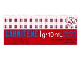Carnitene*os 10fl 1g Monod